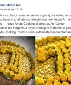 Set Complet - Profesional cu 28 de Duze-Duiuri Rusești - Anyta Cooking [Transport GRATIS]