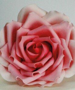 Decupator Petale Trandafiri Largi- FMM