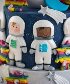 Mulaj din siliconi -Astronauti -Karen Davis